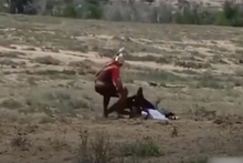 Dev kartal küçük kıza böyle saldırdı!