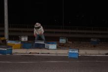 Arı kovanı yüklü kamyonet devrildi arılar etrafa saçıldı