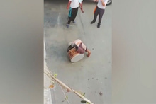 Davulla güreşen adam sosyal medyada olay oldu