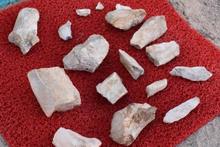 Çoban Kayseri'de bunu buldu: 10 milyon yaşında!