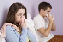 Savaş gibi grip salgını: 80 bin ölü!