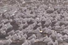 Yer İstanbul! Binlercesi otoparka sığındı