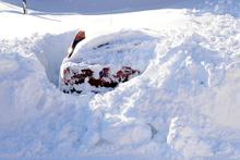Bitlis'de 2 metre kar yağdı ev ve araçlar kara gömüldü
