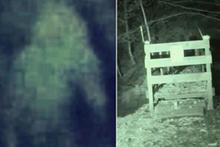 Bu görüntüler ormanda çekildi! Uzaylı mı yoksa şeytan mı?