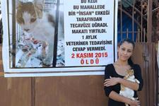Mersin'de kediye tecavüz mahalle karıştı