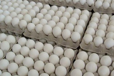 CHP'li Muharrem İnce'ye iki koli yumurta