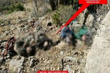 TSK açıkladı! Cudi Dağı'nda PKK'ya büyük darbe
