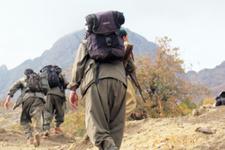 Öldürülen PKK'lının mesleği şok etti! MEB'den ödül bile almış