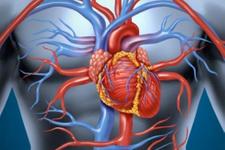 Aort damarı neden yırtılır belirtileri ve tedavisi nasıl?