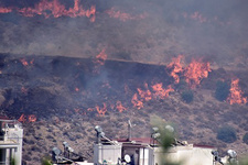 Bodrum'da orman yangını sitelere ilerliyor