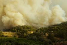 Tatil cennetinde büyük yangın! 13 ev yandı giderek yayılıyor