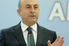 Bakan tepki gösterdi HDP özür diledi!