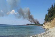 Gelibolu'da şehitlik alanında orman yangını!