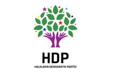 HDP Birecik İlçe Eş Başkanı gözaltına alındı