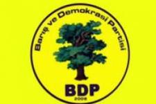 BDP'de eş başkanlar belli oldu