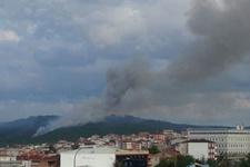 Sultanbeyli'de orman yangını!