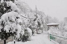 Bolu hava durumu kar yağışı başladı