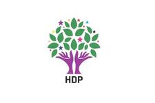 HDP ilçe başkanı istifa etti