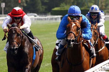 Kocaeli TJK at yarışı 23 Mayıs 2016 altılı ganyan bülteni