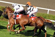 İzmir TJK at yarışı 6 Mayıs 2016 altılı ganyan bülteni