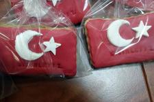Muğla'dan Nusaybin'e 'moral' gönderdiler