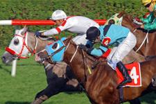 İzmir TJK at yarışı 8 Temmuz 2016 altılı ganyan bülteni