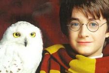 Harry Potter hayranlarına müjde 8'inci kitap çıktı