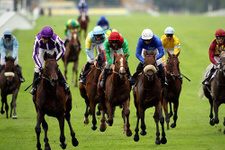 İzmir TJK at yarışı 16 Eylül 2016 altılı ganyan bülteni
