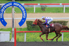 Kocaeli TJK at yarışı 27 Eylül 2016 altılı ganyan bülteni