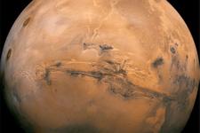 Mars'ta hayatta kalabilen canlı keşfedildi