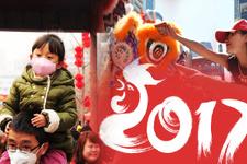 Türk kökenli takvimi Çinliler kutluyor! Horoz yılı kutlamaları