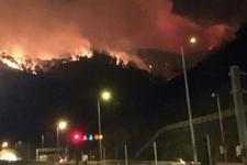 Trabzon Sürmene'de orman yangını durdurulamıyor