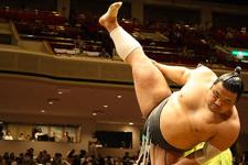 Yapay zeka sumo güreşmeyi öğrendi