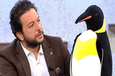Nihat Doğan'dan Gülben Ergen'e penguenli gönderme!