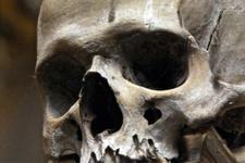 6 bin yıllık kafatasının sahibi tsunami kurbanı olabilir