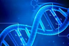 Gen mühendisliğinde devrim niteliğinde bir keşif