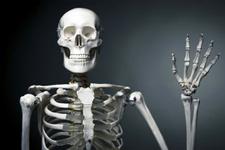Bilim insanları insan kemiklerine benzeyen alaşım geliştirdi