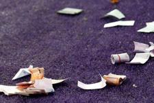 Şampiyonlar Ligi maçında sahaya bakın ne attılar