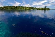Pasifik Okyanusu'nun ortasında antik kent keşfedildi