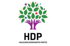 HDP milletvekili Ayhan'a yurt dışı yasağı