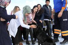 Özel eğitimli Arya'ya öğrencilerden yoğun ilgi