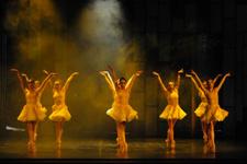 Down sendromlulara özel bale gösterisi