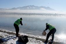 Van'da donan Sıhke Gölü'ne hayvanlar için yem bırakıldı