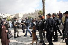 İsrail Mescid-i Aksa'da köpekleriyle saldırdı! Dehşet kareler