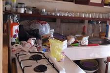 Aç kalan PKK'lılar yayla evlerine girmiş