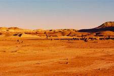 Mars'ta yaşam için büyük tehlike! Giden herkes evrim geçirecek