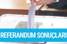 Muğla referandum sonuçları 2017 seçimi evet hayır oyları