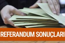 Kırıkkale referandum sonuçları 2017 seçimi evet hayır oyları
