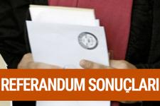 Aksaray referandum sonuçları 2017 seçimi evet hayır oyları