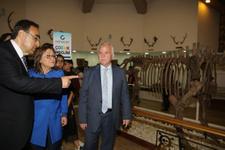 Türkiye'nin ilk ve tek zooloji müzesi Gaziantep'te açıldı